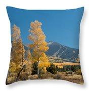 Autumn In Hart Pairie Throw Pillow
