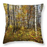 Autumn In The Birches Forest Throw Pillow