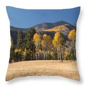 Autumn In Lockett Meadow Throw Pillow