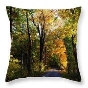 Autumn In Missouri Throw Pillow