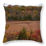 Autumn In Missouri Throw Pillow