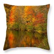 Autumn In Monroe Throw Pillow