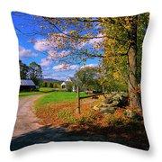 Autumn In Montpelier Throw Pillow