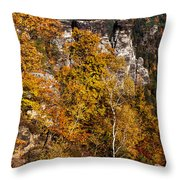 Autumn In Saxon Switzerland Throw Pillow