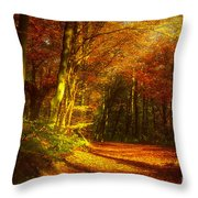 Autumn In Siebengebirge Throw Pillow