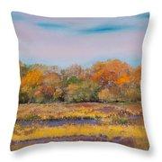 Autumn In The Adirondack Mountains Throw Pillow