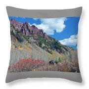 Autumn In The Aspen Hills Throw Pillow