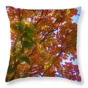 Autumn In The Canopy Throw Pillow