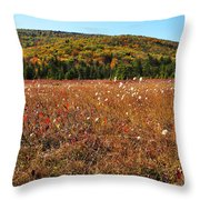Autumn In The Glades Throw Pillow