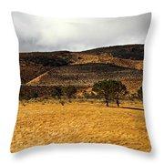 Autumn In The High Desert Throw Pillow