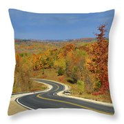 Autumn In The Hockley Valley Throw Pillow