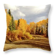 Autumn In The North Throw Pillow