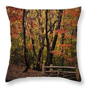 Autumn In The Rambles Throw Pillow