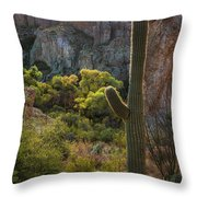 Autumn In The Sonoran  Throw Pillow