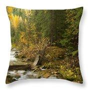 Autumn In The St Joe Throw Pillow