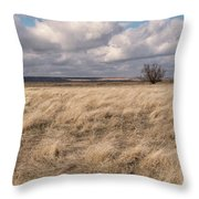 Autumn In The Steppes Throw Pillow