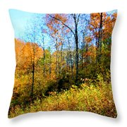 Autumn In The Tennessee Hills Throw Pillow
