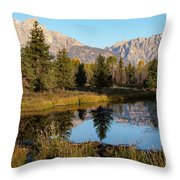 Autumn In The Tetons Throw Pillow