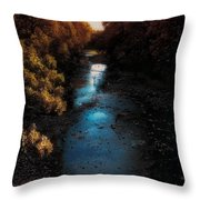 Autumn In The Tributary Throw Pillow