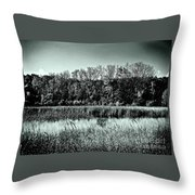 Autumn In The Wetlands - Black And White Throw Pillow