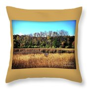 Autumn In The Wetlands Throw Pillow