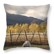Autumn In The Winelands Throw Pillow