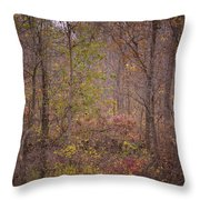 autumn In The Woos Throw Pillow