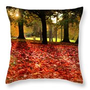 Autumn In Woodthorpe Throw Pillow