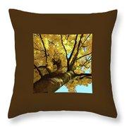 Autumn Is My Favourite Colour Throw Pillow
