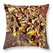 Autumn Is On The Way Throw Pillow