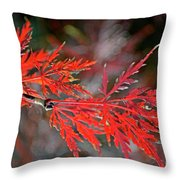 Autumn Japanese Maple Throw Pillow