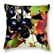 Autumn Jostaberries Throw Pillow