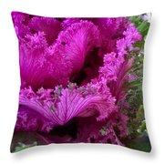 Autumn Kale Throw Pillow