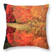 Autumn Lake Scenery Throw Pillow