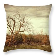 Autumn Landscape In Late November Throw Pillow by Sandra Cunningham
