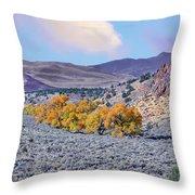 Autumn Landscape In Northern Nevada. Throw Pillow