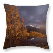 Autumn Landscape Near Telluride Throw Pillow