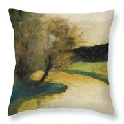 Autumn Landscape Of Brook In The Evening Light Throw Pillow
