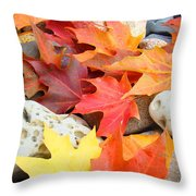 Autumn Leaves Art Print Coastal Fossil Rocks Baslee Troutman Throw Pillow