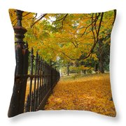 Autumn Leaves At Lafayette Park Throw Pillow