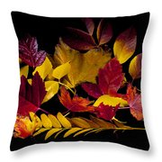Autumn Leaves Throw Pillow by Barry C Donovan