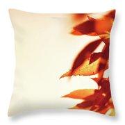 Autumn Leaves Border Throw Pillow