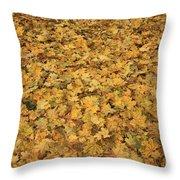 Autumn Leaves Canvas Throw Pillow