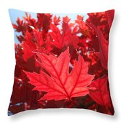 Autumn Leaves Fall Art Bright Red Leaves Baslee Troutman Throw Pillow