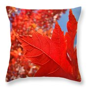 Autumn Leaves Fall Art Red Orange Leaves Blue Sky Baslee Troutman Throw Pillow
