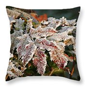 Autumn Leaves In A Frozen Winter World Throw Pillow
