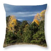 Autumn Leaves In Hart Prairie Throw Pillow