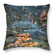 Autumn Leaves In Waterfall Throw Pillow