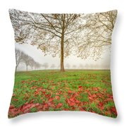 Autumn Leaves Near To Far Super High Resolution Throw Pillow