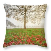 Autumn Leaves Near To Far Super High Resolution Throw Pillow